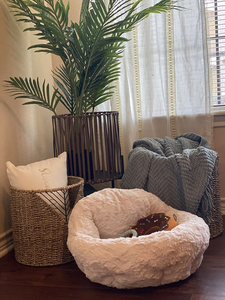 Apartments For Rent Near OU Campus
